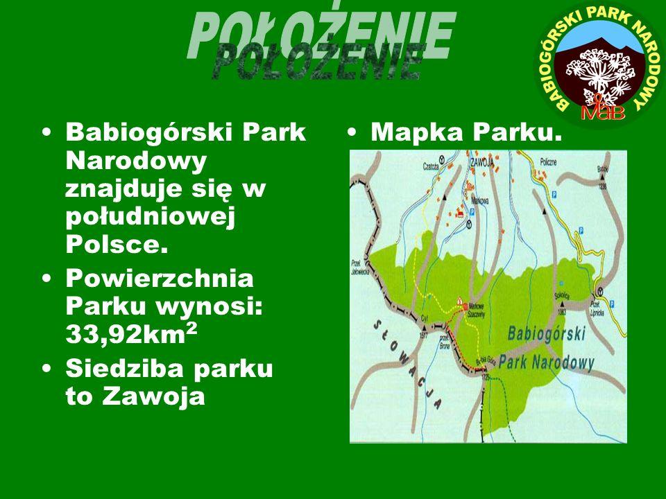 POŁOŻENIE Babiogórski Park Narodowy znajduje się w południowej Polsce.