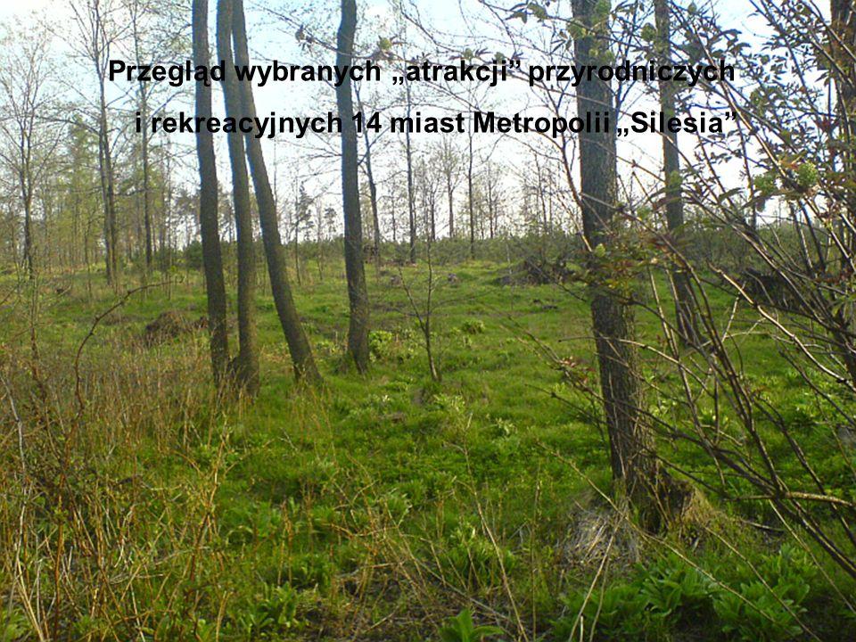 """Przegląd wybranych """"atrakcji przyrodniczych i rekreacyjnych 14 miast Metropolii """"Silesia"""