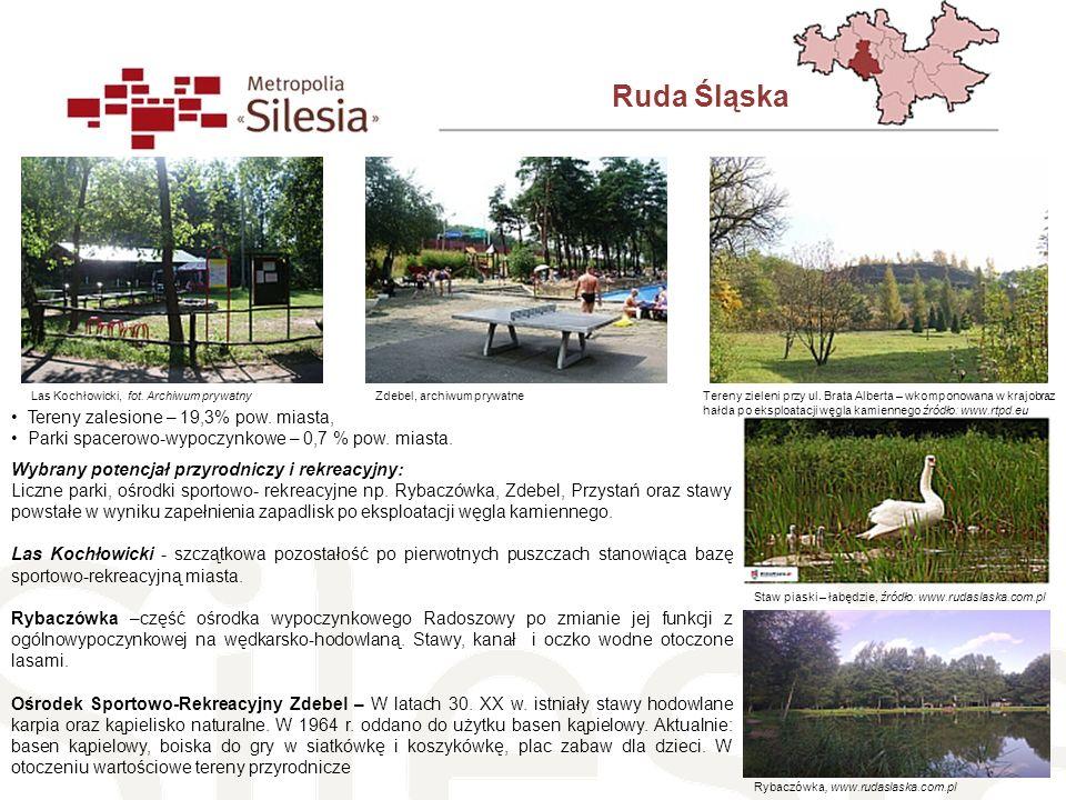 Ruda Śląska Tereny zalesione – 19,3% pow. miasta,