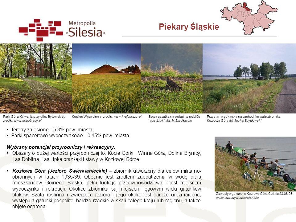 Piekary Śląskie Tereny zalesione – 5,3% pow. miasta,