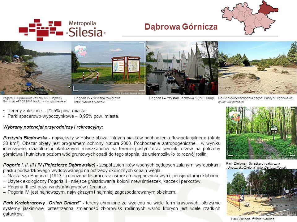 Dąbrowa Górnicza Tereny zalesione – 21,5% pow. miasta,