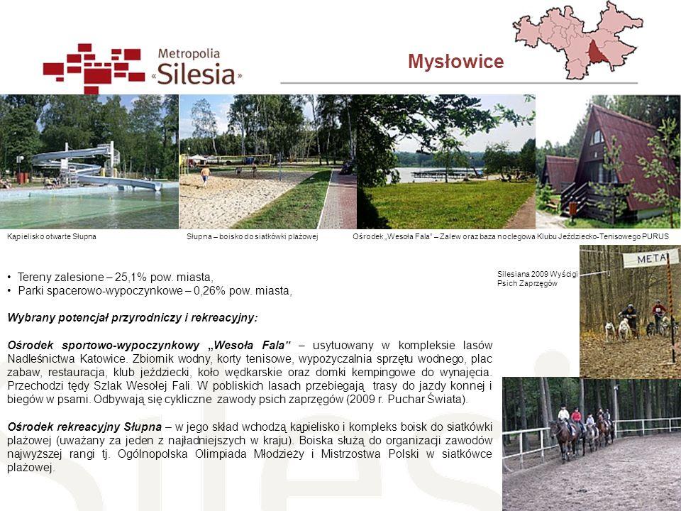 Mysłowice Tereny zalesione – 25,1% pow. miasta,