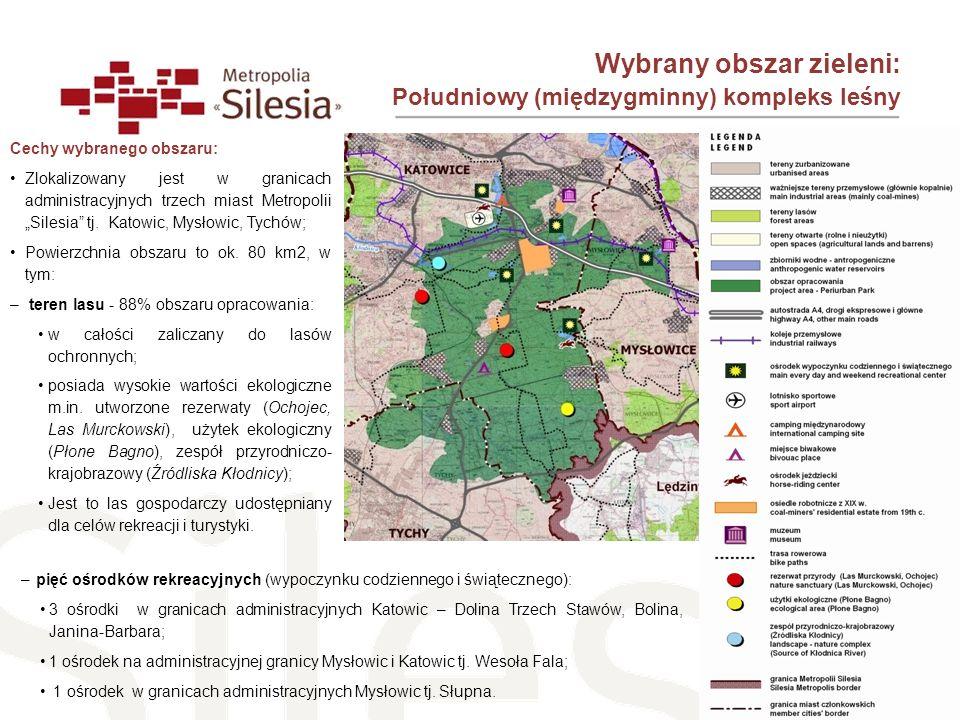 Wybrany obszar zieleni: Południowy (międzygminny) kompleks leśny