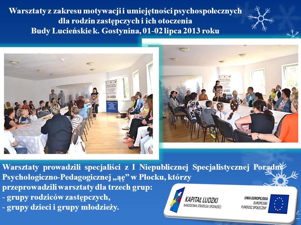 Budy Lucieńskie k. Gostynina, 01-02 lipca 2013 roku
