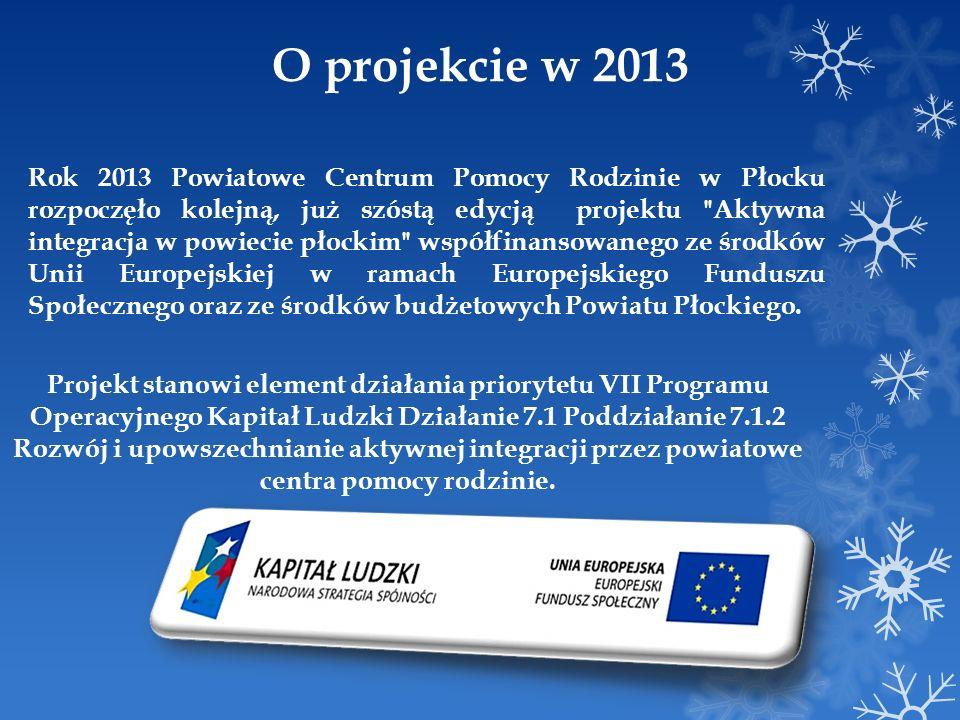 O projekcie w 2013