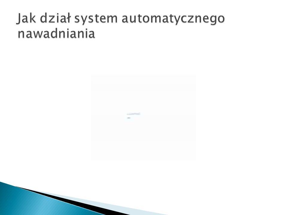 Jak dział system automatycznego nawadniania