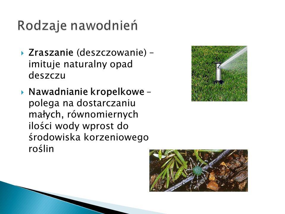 Rodzaje nawodnień Zraszanie (deszczowanie) – imituje naturalny opad deszczu.