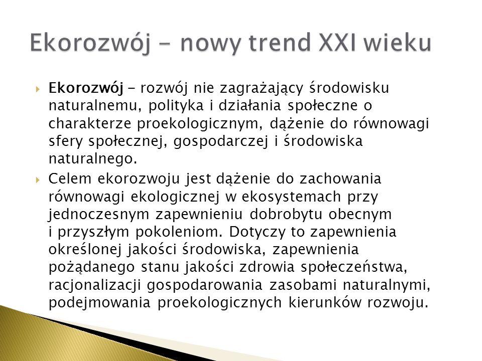 Ekorozwój - nowy trend XXI wieku