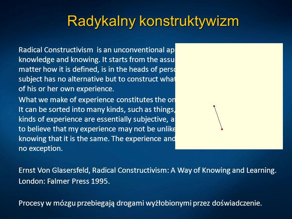 Radykalny konstruktywizm