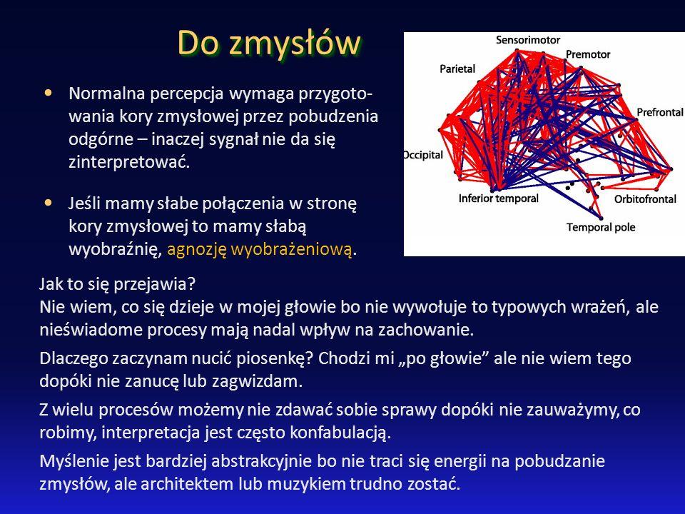 Do zmysłów Normalna percepcja wymaga przygoto-wania kory zmysłowej przez pobudzenia odgórne – inaczej sygnał nie da się zinterpretować.