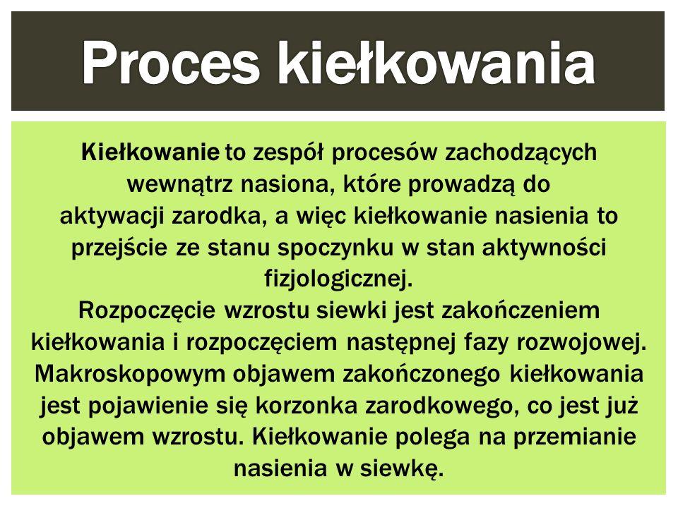 Proces kiełkowania