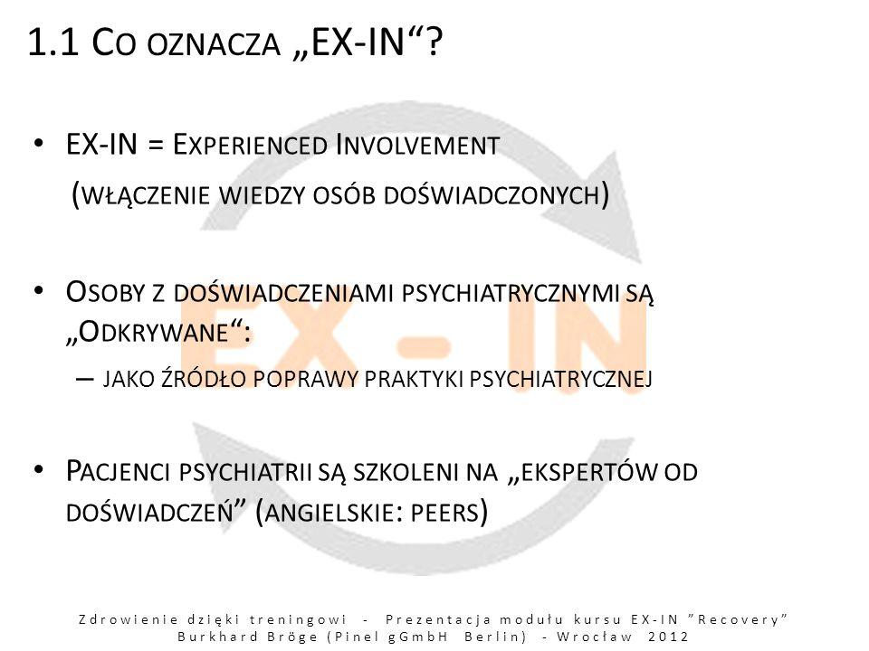 "1.1 Co oznacza ""EX-IN EX-IN = Experienced Involvement"