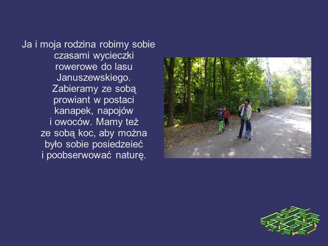 Ja i moja rodzina robimy sobie czasami wycieczki rowerowe do lasu Januszewskiego.