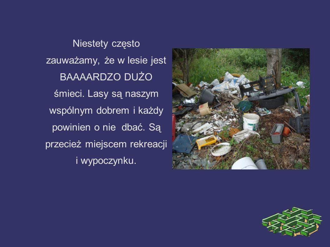Niestety często zauważamy, że w lesie jest BAAAARDZO DUŻO śmieci