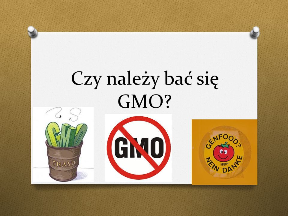 Czy należy bać się GMO