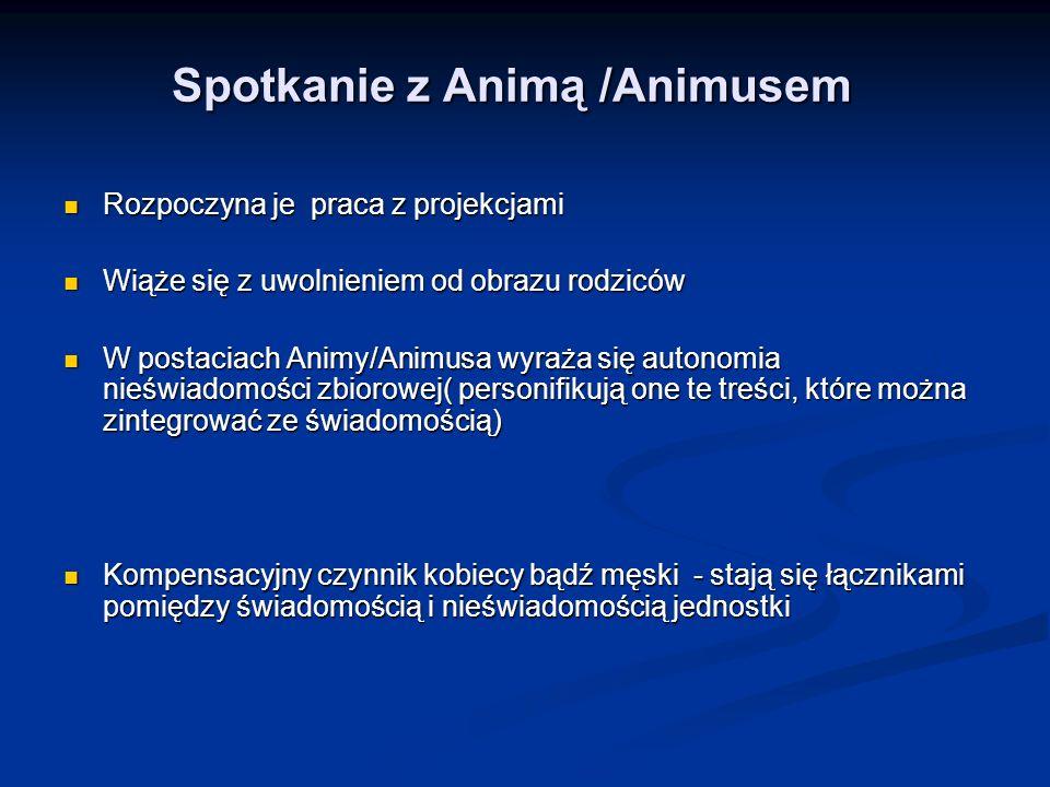 Spotkanie z Animą /Animusem