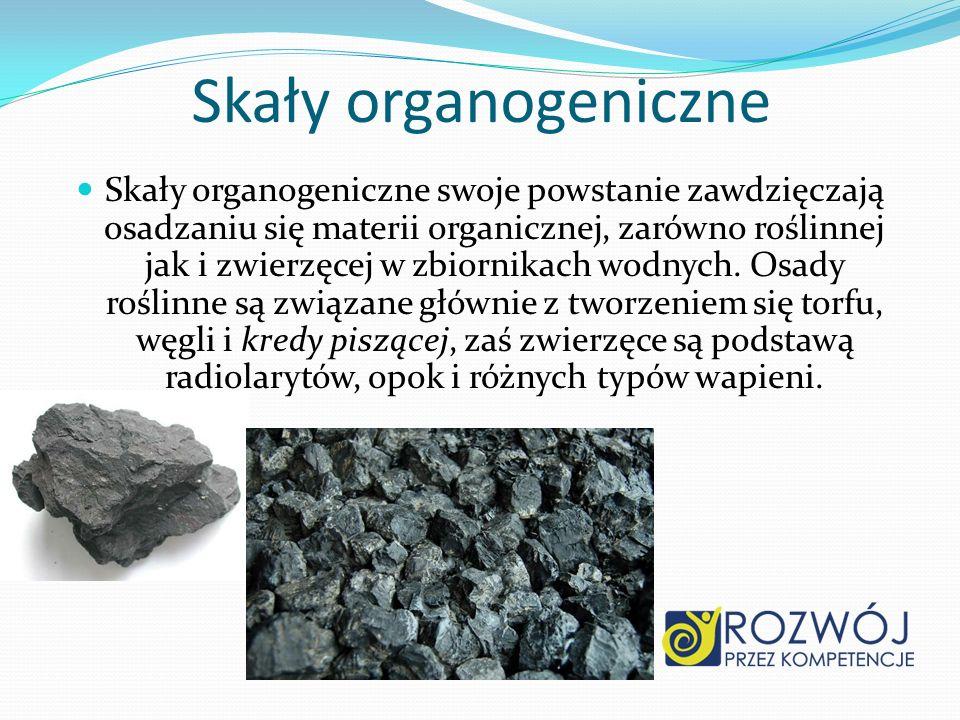 Skały organogeniczne
