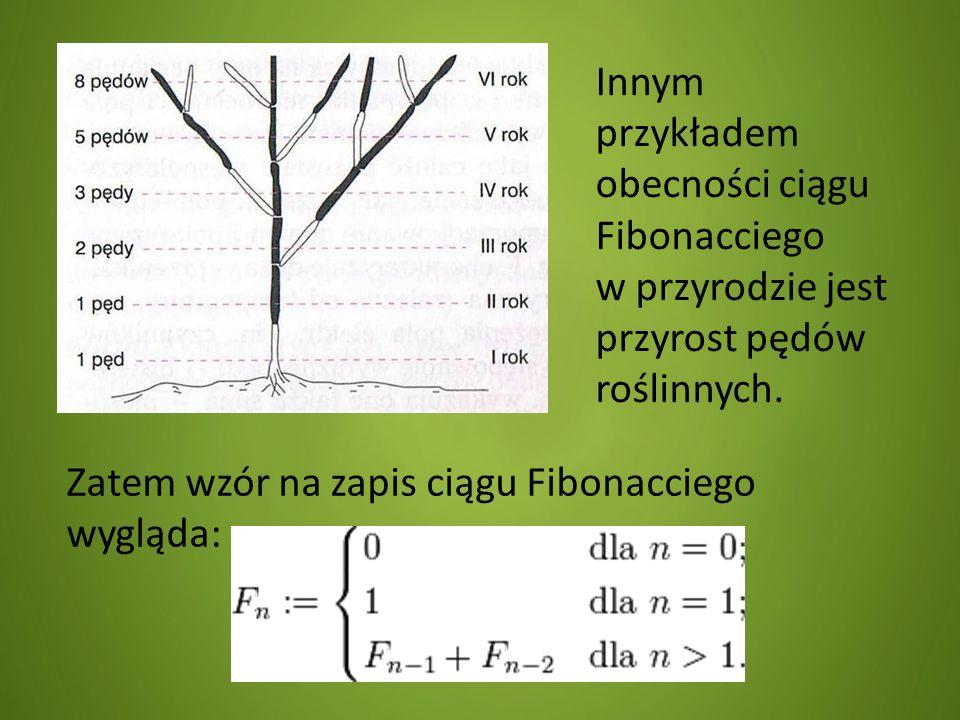 Innym przykładem obecności ciągu Fibonacciego w przyrodzie jest przyrost pędów roślinnych.