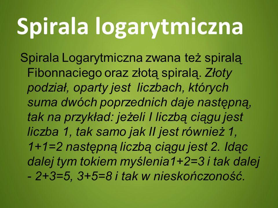 Spirala logarytmiczna