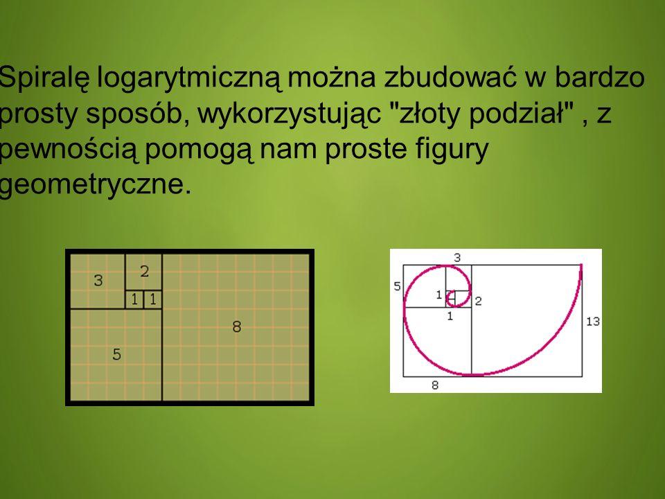 Spiralę logarytmiczną można zbudować w bardzo prosty sposób, wykorzystując złoty podział , z pewnością pomogą nam proste figury geometryczne.