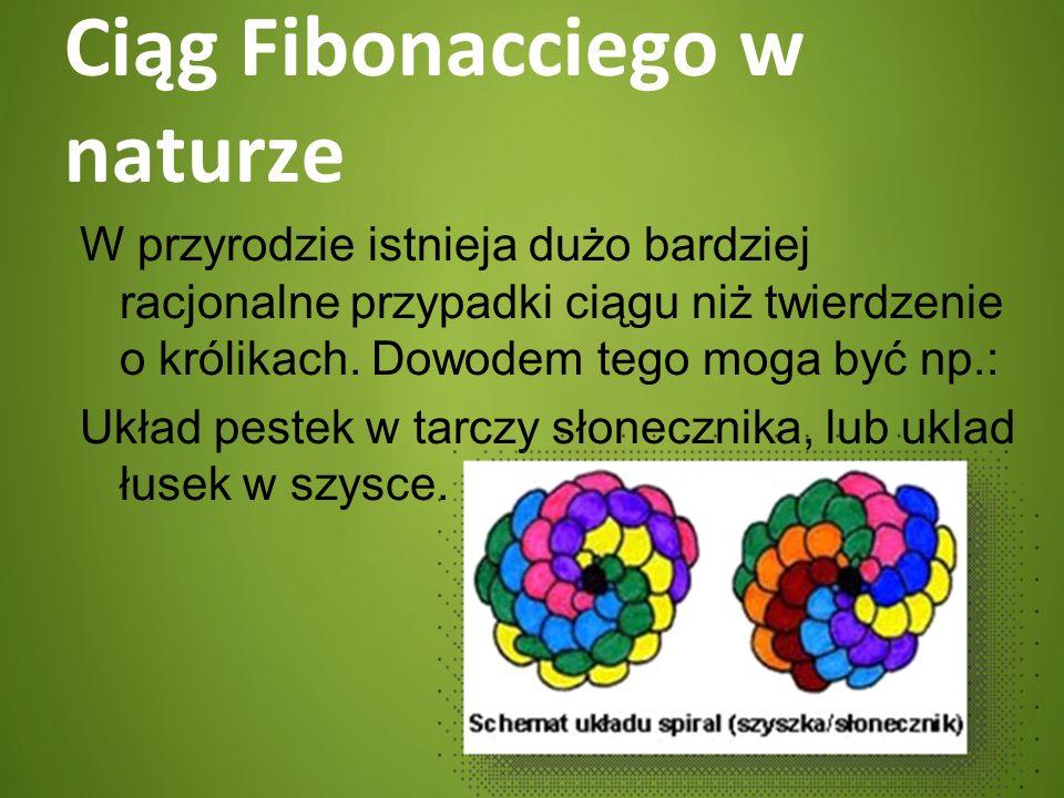 Ciąg Fibonacciego w naturze