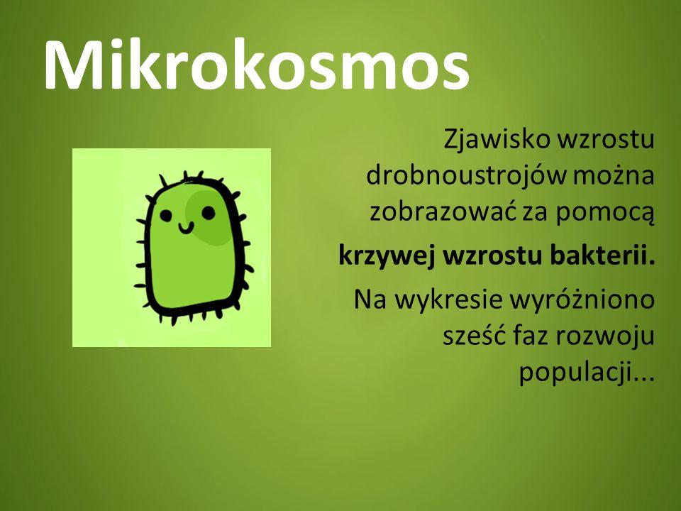 Mikrokosmos Zjawisko wzrostu drobnoustrojów można zobrazować za pomocą