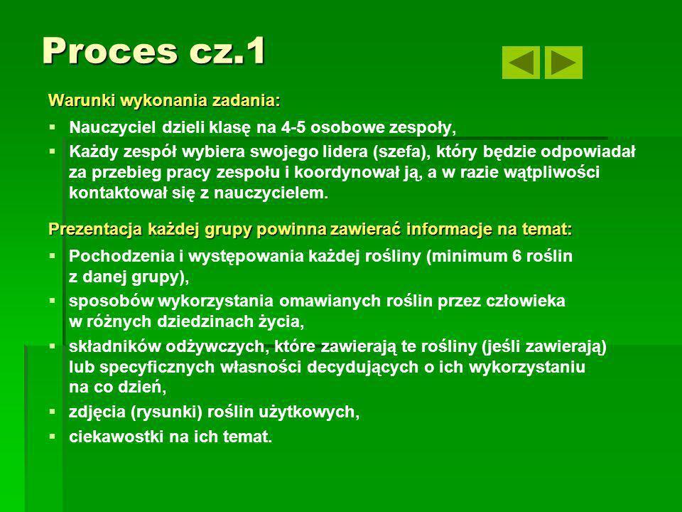 Proces cz.1 Warunki wykonania zadania:
