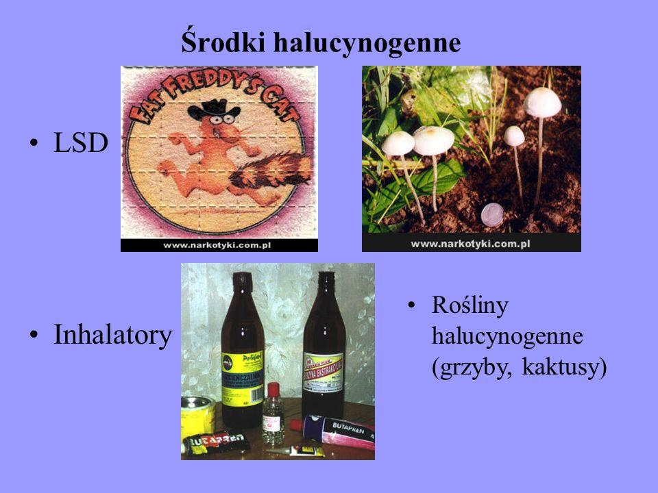 Środki halucynogenne LSD Inhalatory