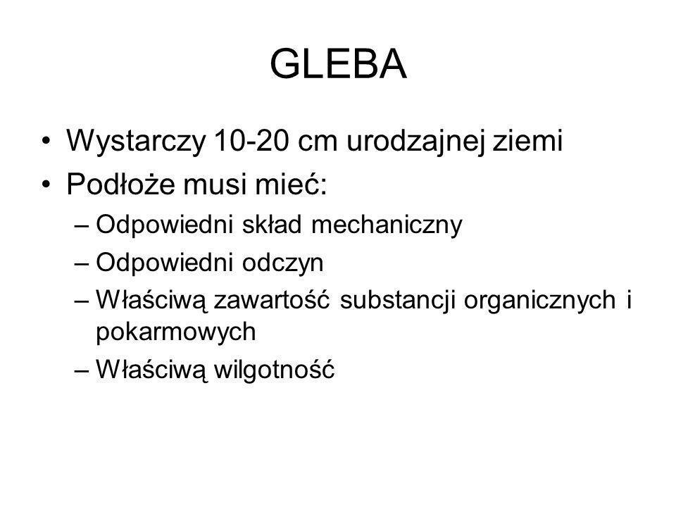 GLEBA Wystarczy 10-20 cm urodzajnej ziemi Podłoże musi mieć: