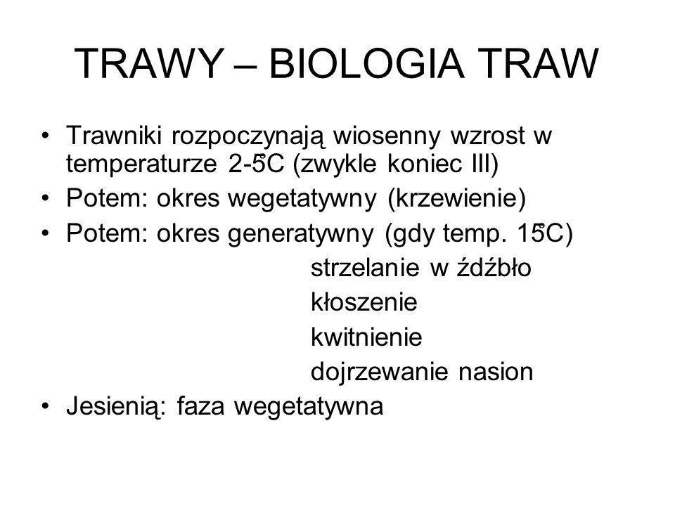 TRAWY – BIOLOGIA TRAW Trawniki rozpoczynają wiosenny wzrost w temperaturze 2-5̊C (zwykle koniec III)