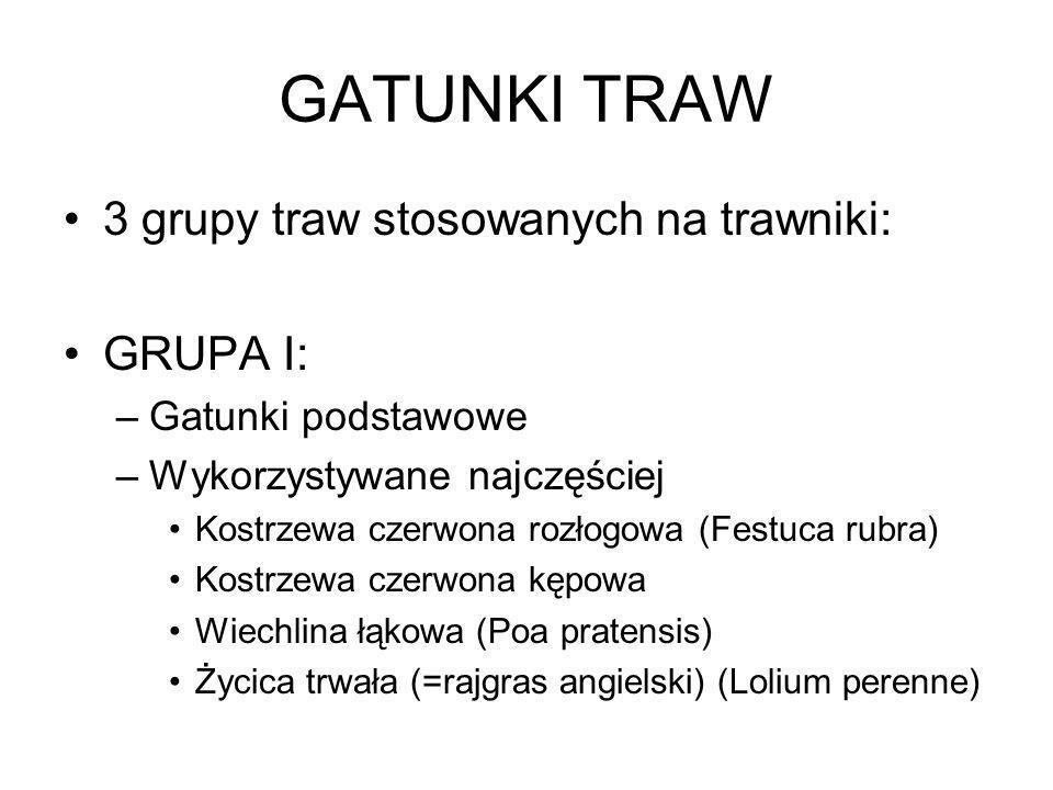 GATUNKI TRAW 3 grupy traw stosowanych na trawniki: GRUPA I: