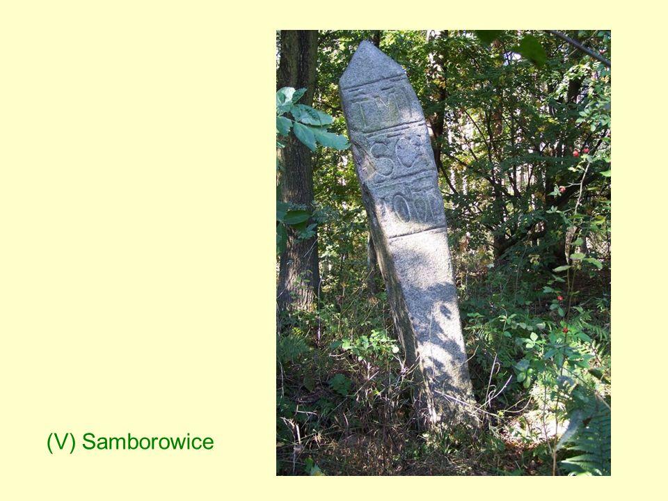 (V) Samborowice