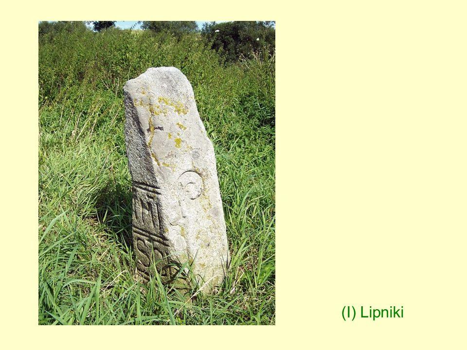 (I) Lipniki