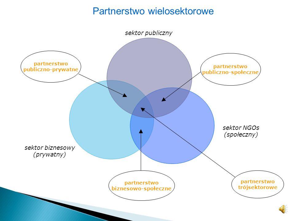 Partnerstwo wielosektorowe
