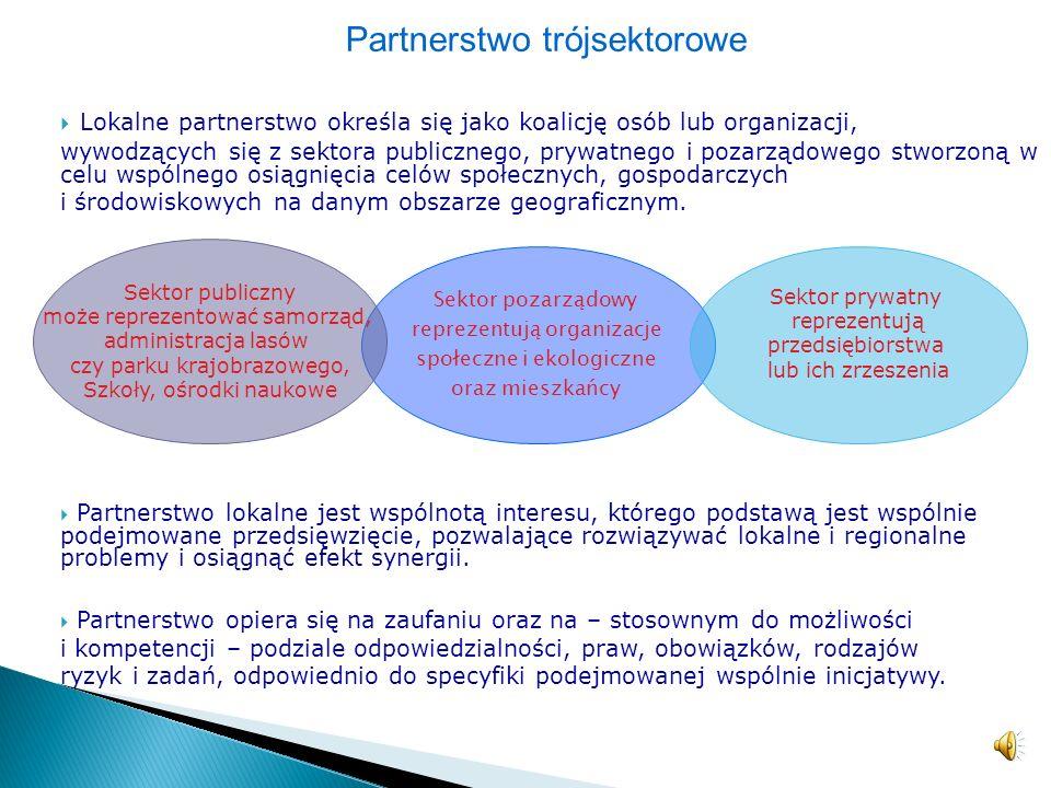Partnerstwo trójsektorowe