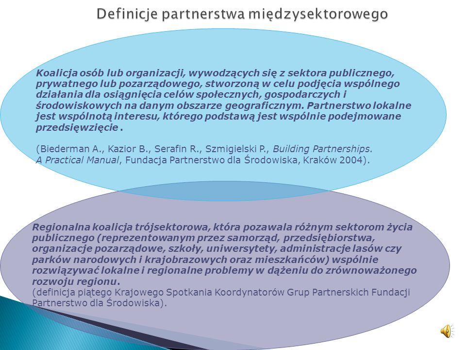 Definicje partnerstwa międzysektorowego