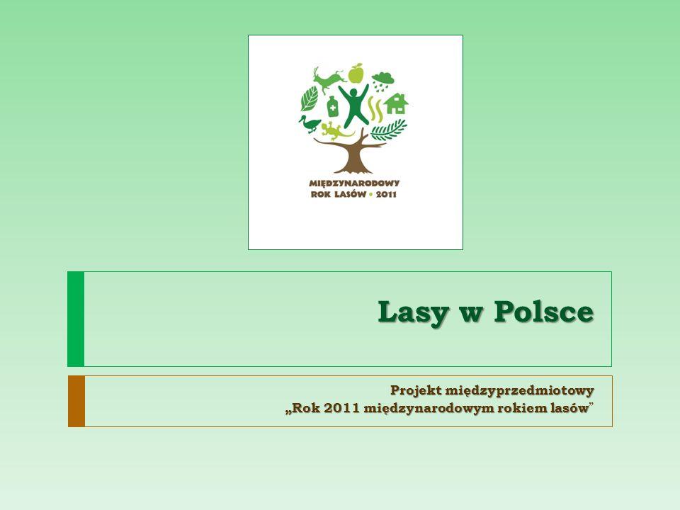 """Projekt międzyprzedmiotowy """"Rok 2011 międzynarodowym rokiem lasów"""