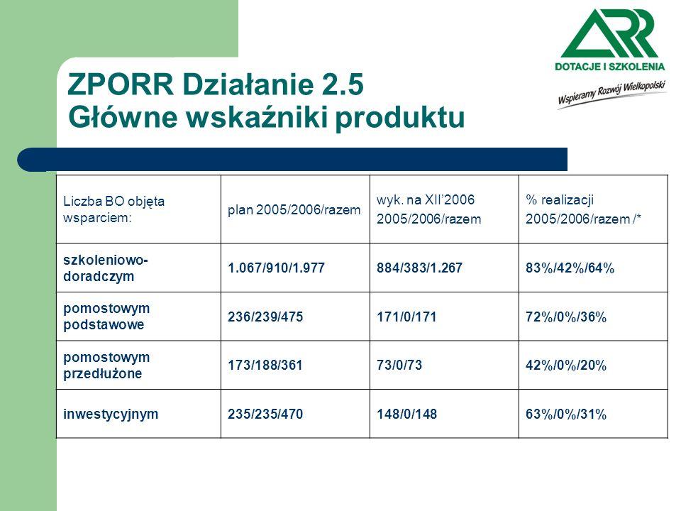ZPORR Działanie 2.5 Główne wskaźniki produktu