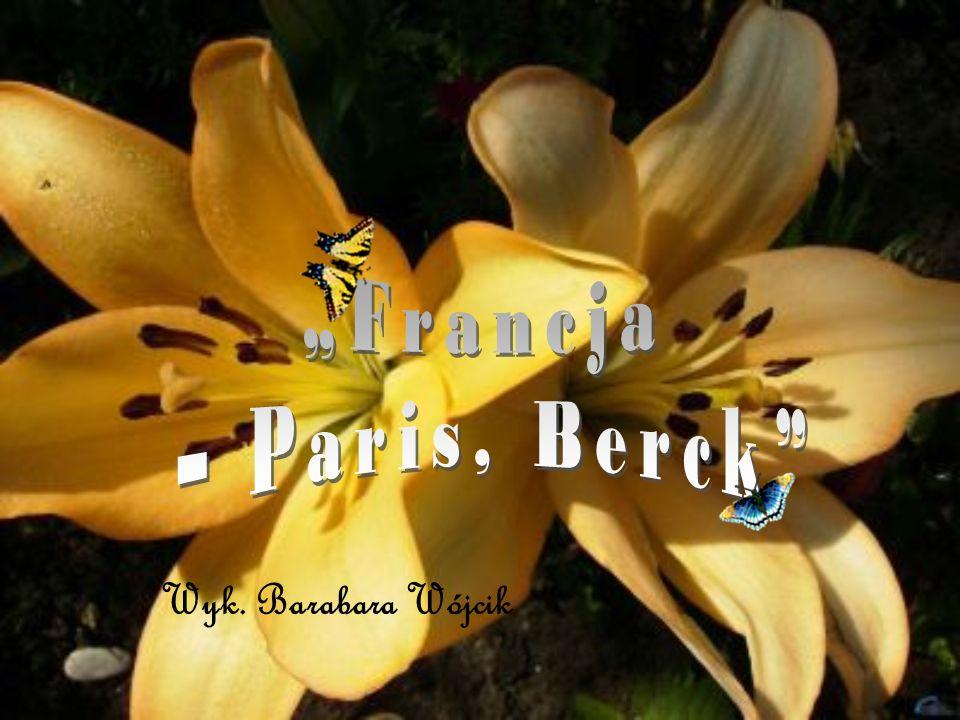"""Francja – Paris ,Breck"