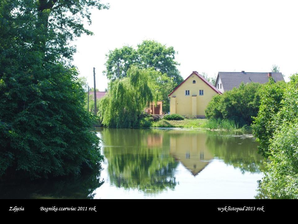 Zdjęcia Bognika czerwiec 2011 rok wyk listopad 2013 rok