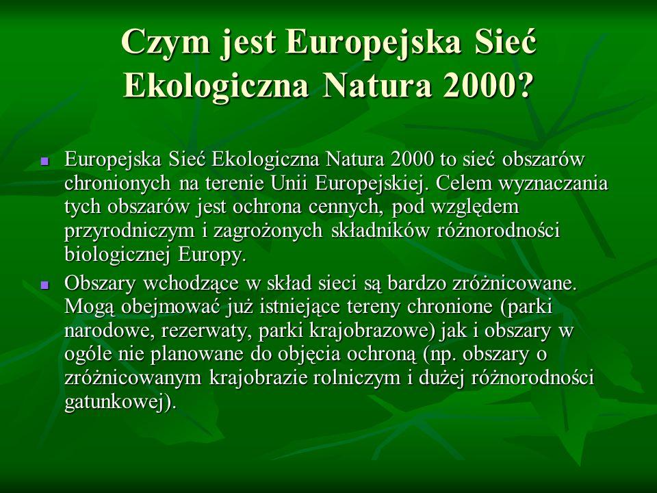 Czym jest Europejska Sieć Ekologiczna Natura 2000