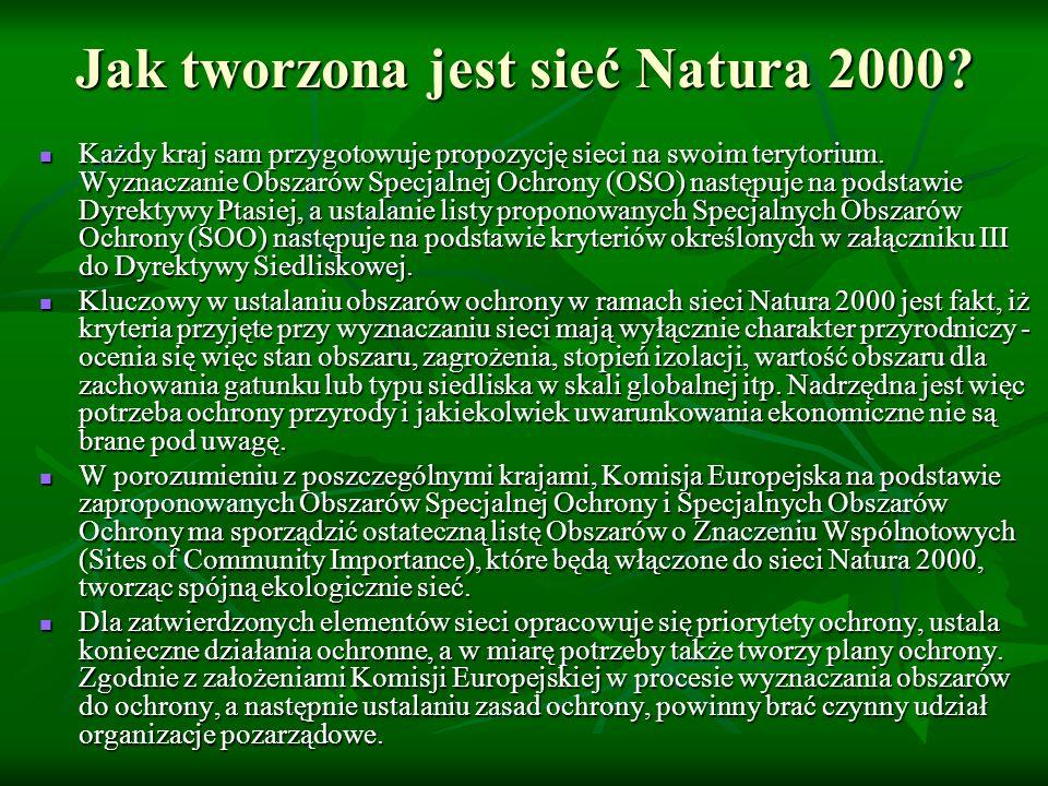 Jak tworzona jest sieć Natura 2000