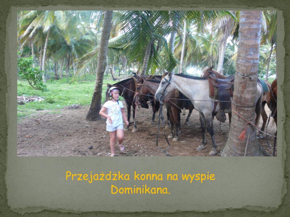 Przejażdżka konna na wyspie Dominikana.