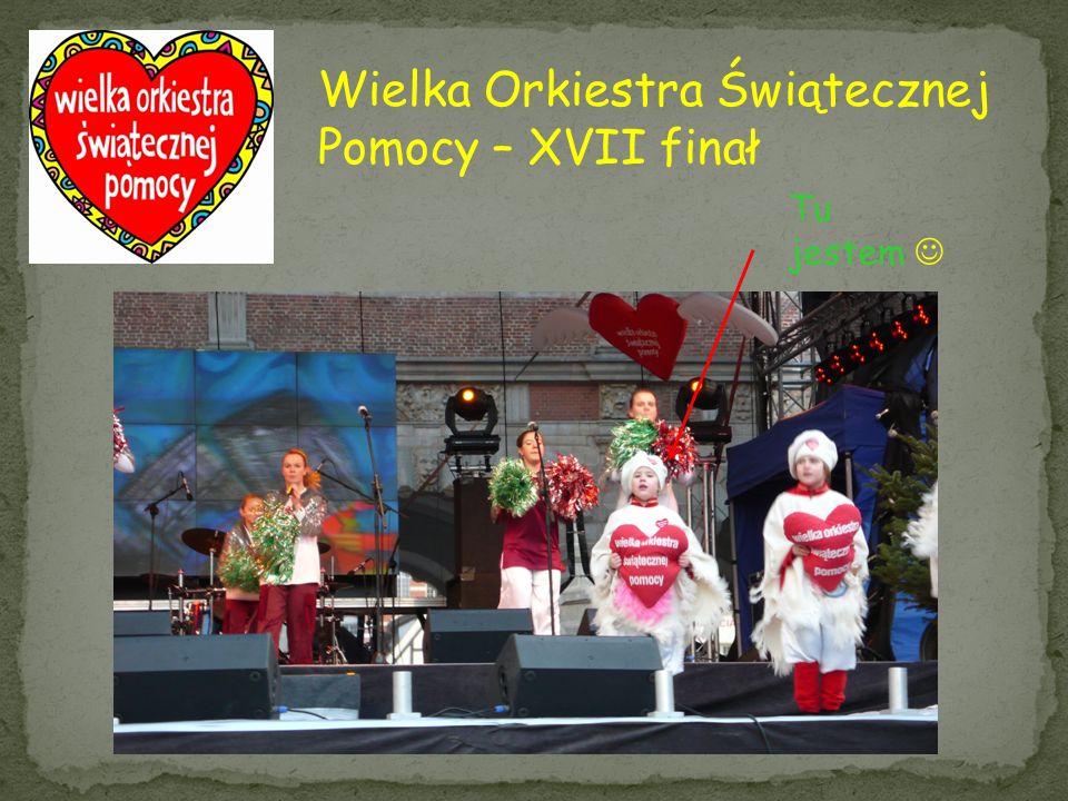 Wielka Orkiestra Świątecznej Pomocy – XVII finał