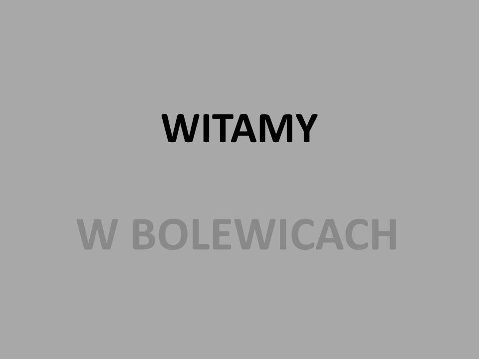 WITAMY W BOLEWICACH