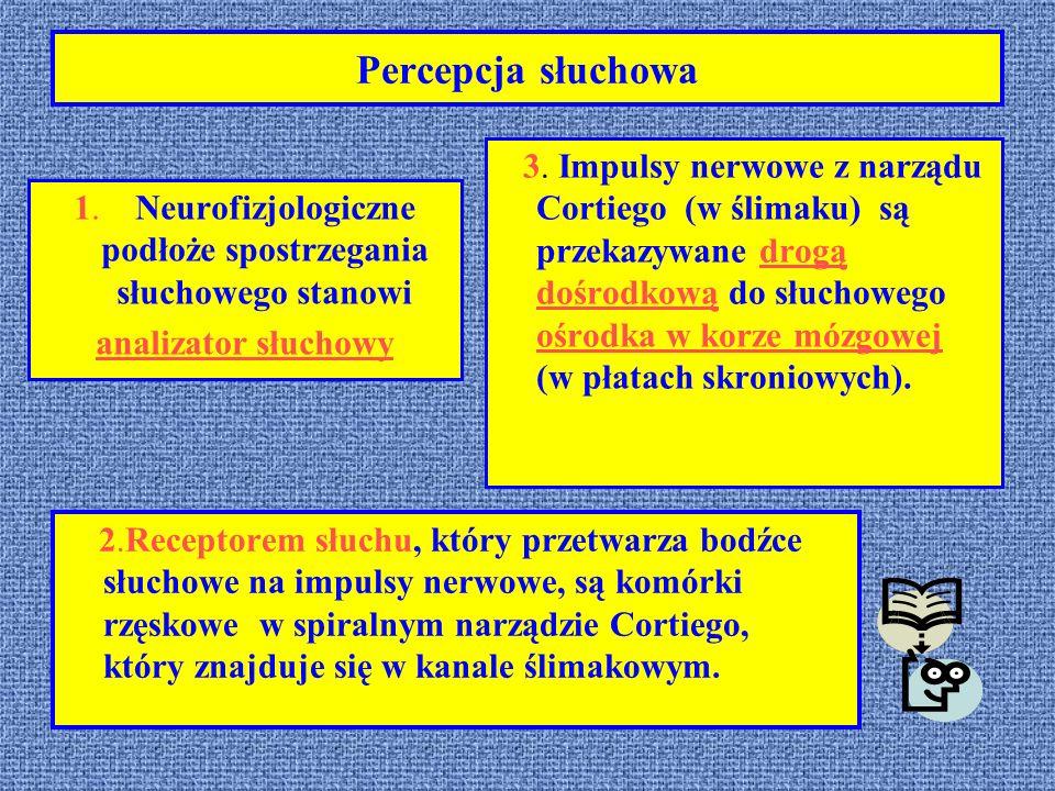 1. Neurofizjologiczne podłoże spostrzegania słuchowego stanowi