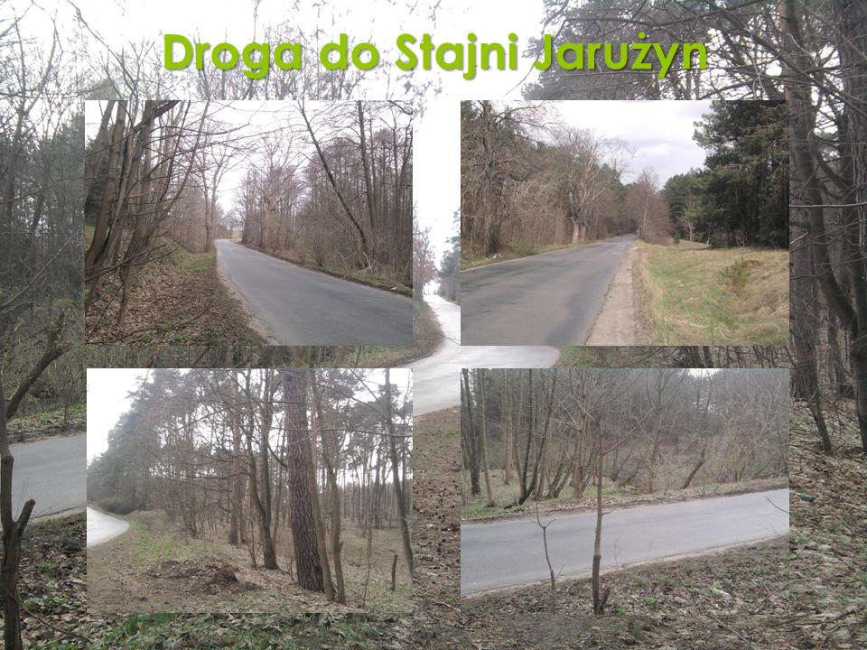 Droga do Stajni Jarużyn