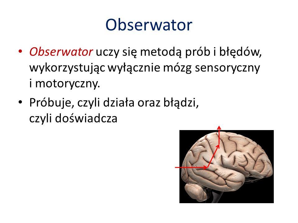 Obserwator Obserwator uczy się metodą prób i błędów, wykorzystując wyłącznie mózg sensoryczny i motoryczny.
