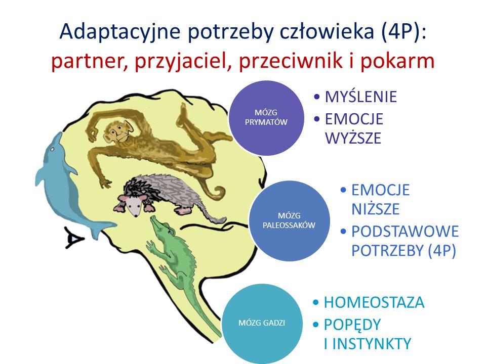 Adaptacyjne potrzeby człowieka (4P): partner, przyjaciel, przeciwnik i pokarm