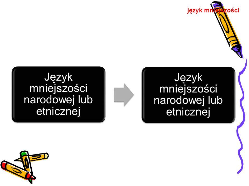 Język mniejszości narodowej lub etnicznej